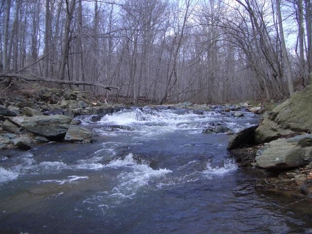 Principio Creek